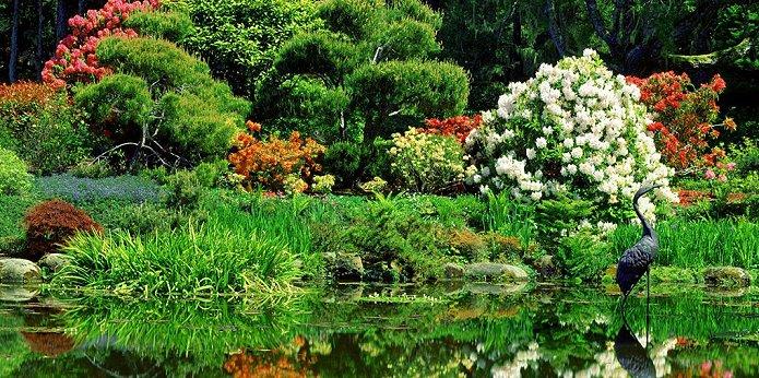 História Dicas Para Construir um Jardim  Jardim Oriental O uso de