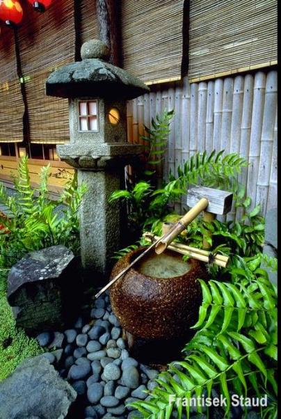 plantas para jardim orientalOriental História Dicas Para Construir